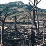 74 anni fa l'olocausto nucleare in Giappone