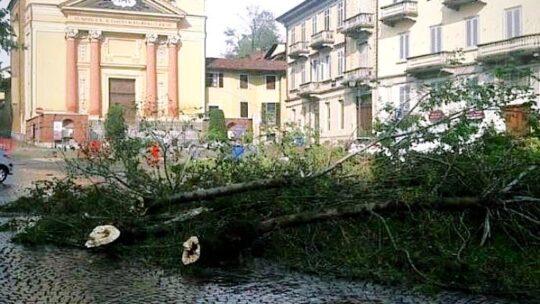 Piemonte, bomba d'acqua: alberi abbattuti e tetti scoperchiati. Allerta gialla per le prossime ore