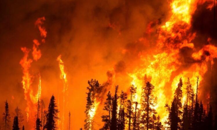 I fatti ambientali globali e quelli della nostra crisi politica hanno assunto proporzioni gigantesche