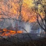 Incendi Chernobyl: ancora non si riescono a domare le fiamme che hanno quasi raggiunto i depositi radioattivi