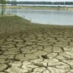 Allarme siccità, agricoltura a rischio. È la primavera più secca da 60 anni