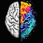 Nicola Petrogalli, una teoria da Nobel per la causa delle malattie mentali