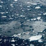 Artico, nel 2020 la seconda estensione minima dei ghiacci