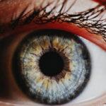 Gli esseri umani hanno i geni per RIGENERARE i propri occhi. Si sono semplicemente disattivati durante l'evoluzione
