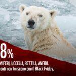 Black Friday, -70%! Peccato sia il calo delle popolazioni di animali in appena 50 anni…