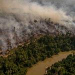 La deforestazione ha distrutto in 18 anni l'8% dell'Amazzonia, un'area grande come la Spagna. Lo studio