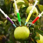 Il 70% della frutta che mangiamo contiene residui di pesticidi. L'allarme nel nuovo dossier