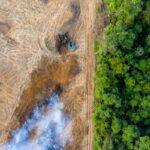 L'Amazzonia collasserà entro il 2064 (e sarà una catastrofe per tutti). Il nuovo spaventoso studio