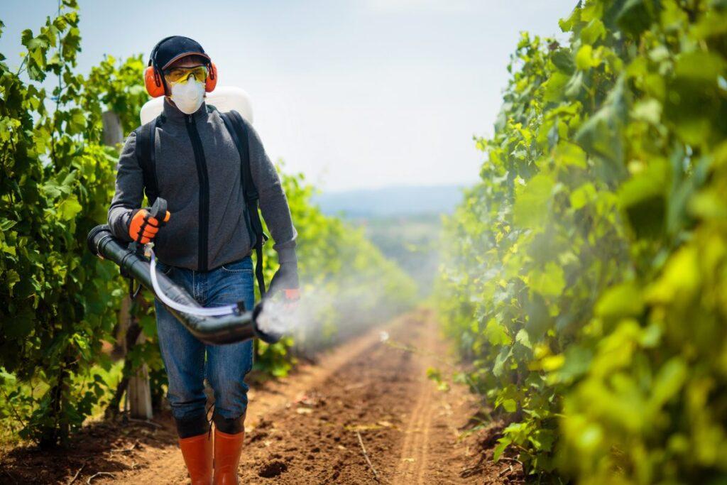 Pesticidi vietati in Europa: la Commissione europea mette fine all'esportazione nel mondo (di cui l'Italia è primatista)