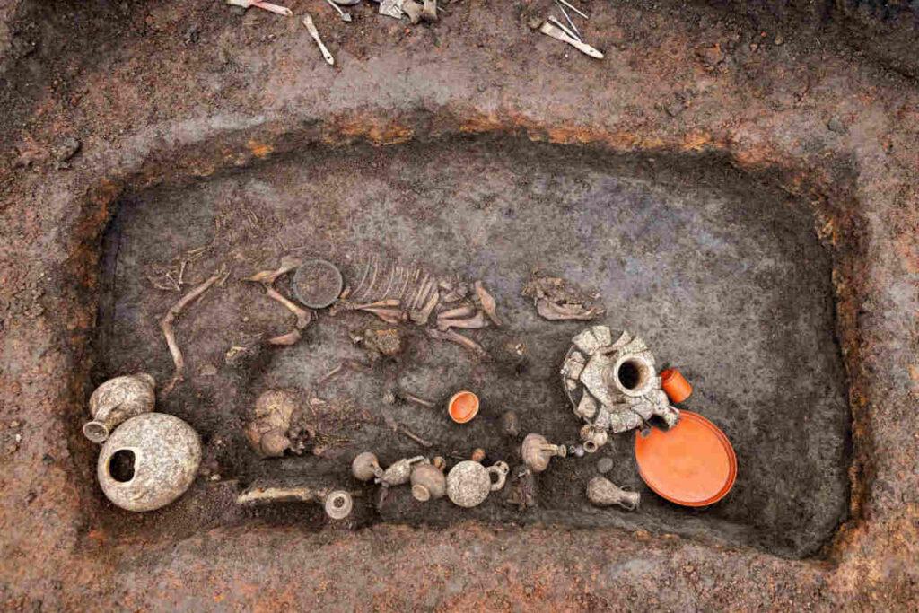 Scoperta in Francia l'eccezionale tomba di un bambino di 2.000 anni fa, sepolto con il suo cagnolino