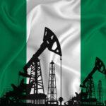 Sentenza storica: gli agricoltori vincono la causa contro Shell per gli sversamenti di petrolio nel Niger