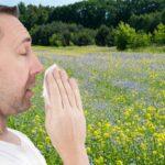 I cambiamenti climatici aggravano le allergie stagionali. La conferma in un nuovo studio