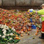 ONU: Secondo il Programma per l'ambiente sono andate sprecate nel mondo circa 931 milioni di tonnellate di cibo nel 2019