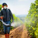 Gli Pfas sono presenti anche nei pesticidi, e nessuno sa perché. L'allarme degli scienziati