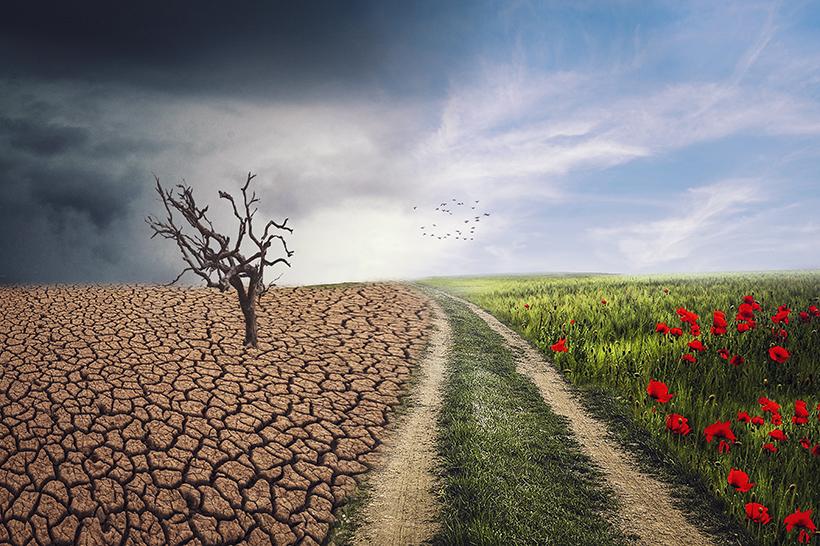 Ecosistemi in pericolo: Italia destina solo 1.69 miliardi per aria e biodiversità