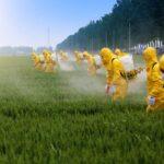 Pesticidi: l'elenco ufficiale delle malattie che causano si allunga