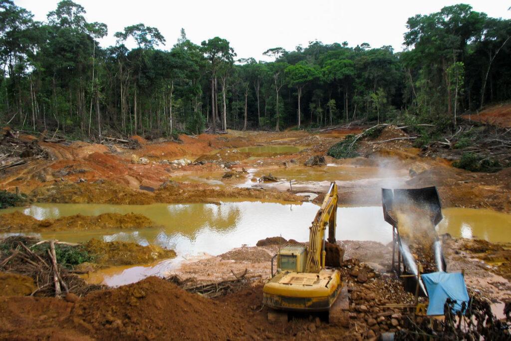 L'Amazzonia non è più in grado di assorbire CO2 dall'atmosfera