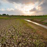 Allarme siccità in Sicilia: l'estate del 2021 è la più secca dell'ultimo decennio