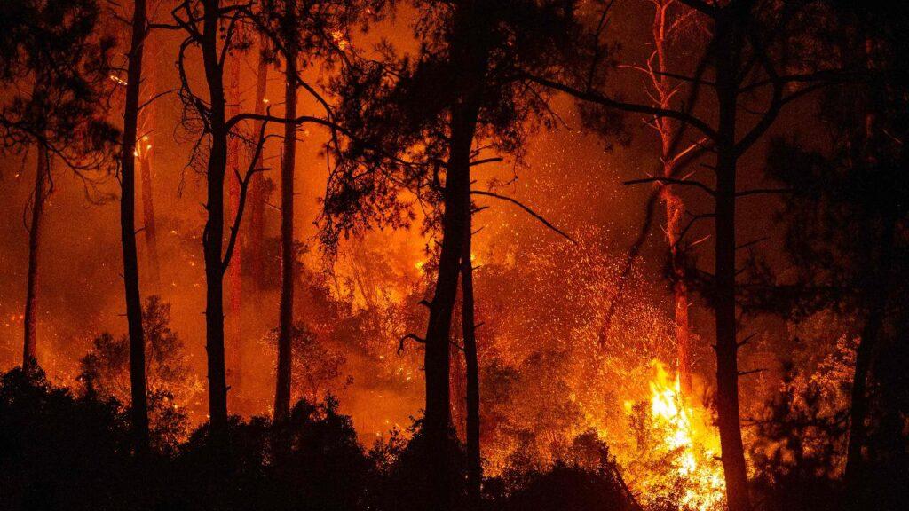 Incendi in Turchia: il fuoco ha trasformato Bodrum e i resort della costa sud in un inferno. Confermata la morte di 8 persone