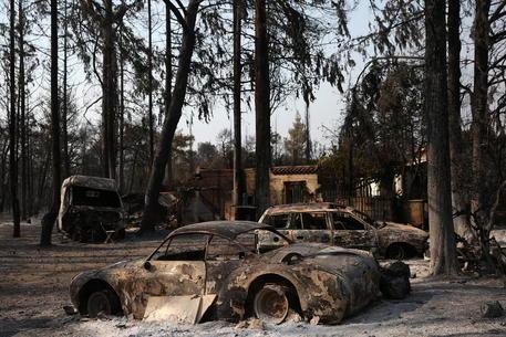 Incendio minaccia nord di Atene, abitazioni a rischio