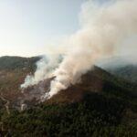 In fiamme anche Savona: scoppiato terribile incendio in località Ciantagalletto