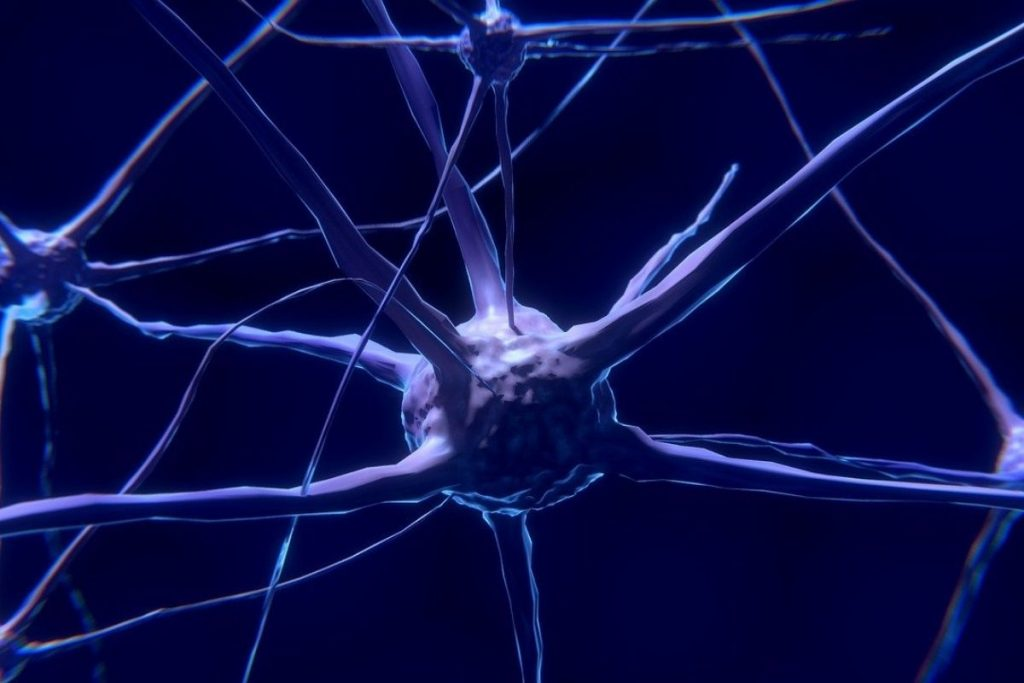 Non solo dopamina! Gli scienziati hanno appena scoperto che c'è un'altra cosa che gratifica il tuo cervello