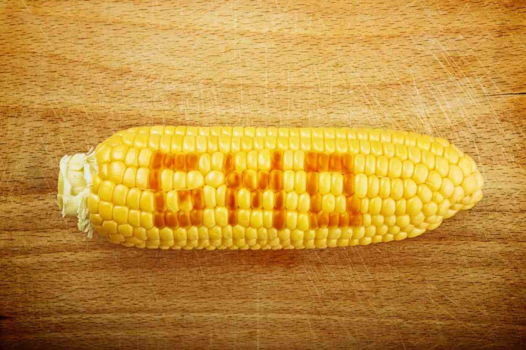 Nuovi OGM: l'Ue vuole deregolamentarli nonostante i rischi evidenziati da ambientalisti, contadini e consumatori