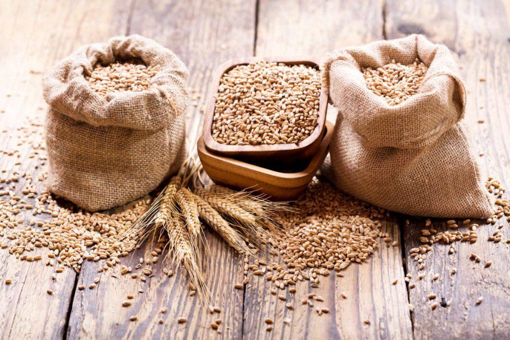 Grano: continuano i rincari delle farine, con punte dell'81%. Richiesta indagine parlamentare